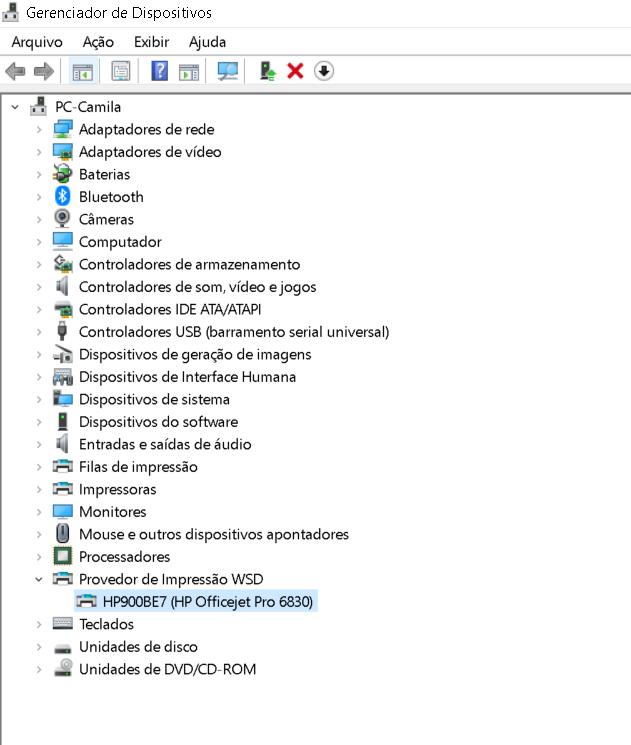 Gerenciador_dispositivos_com_WSD_HP.PNG