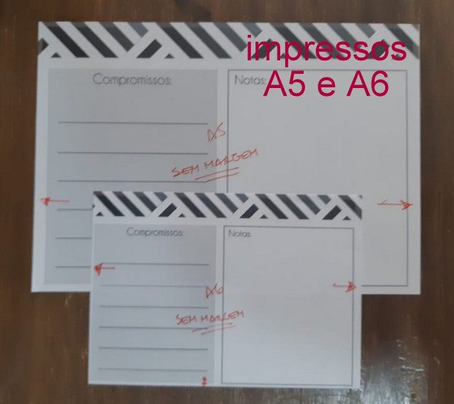 A5 A6 SEM.jpg